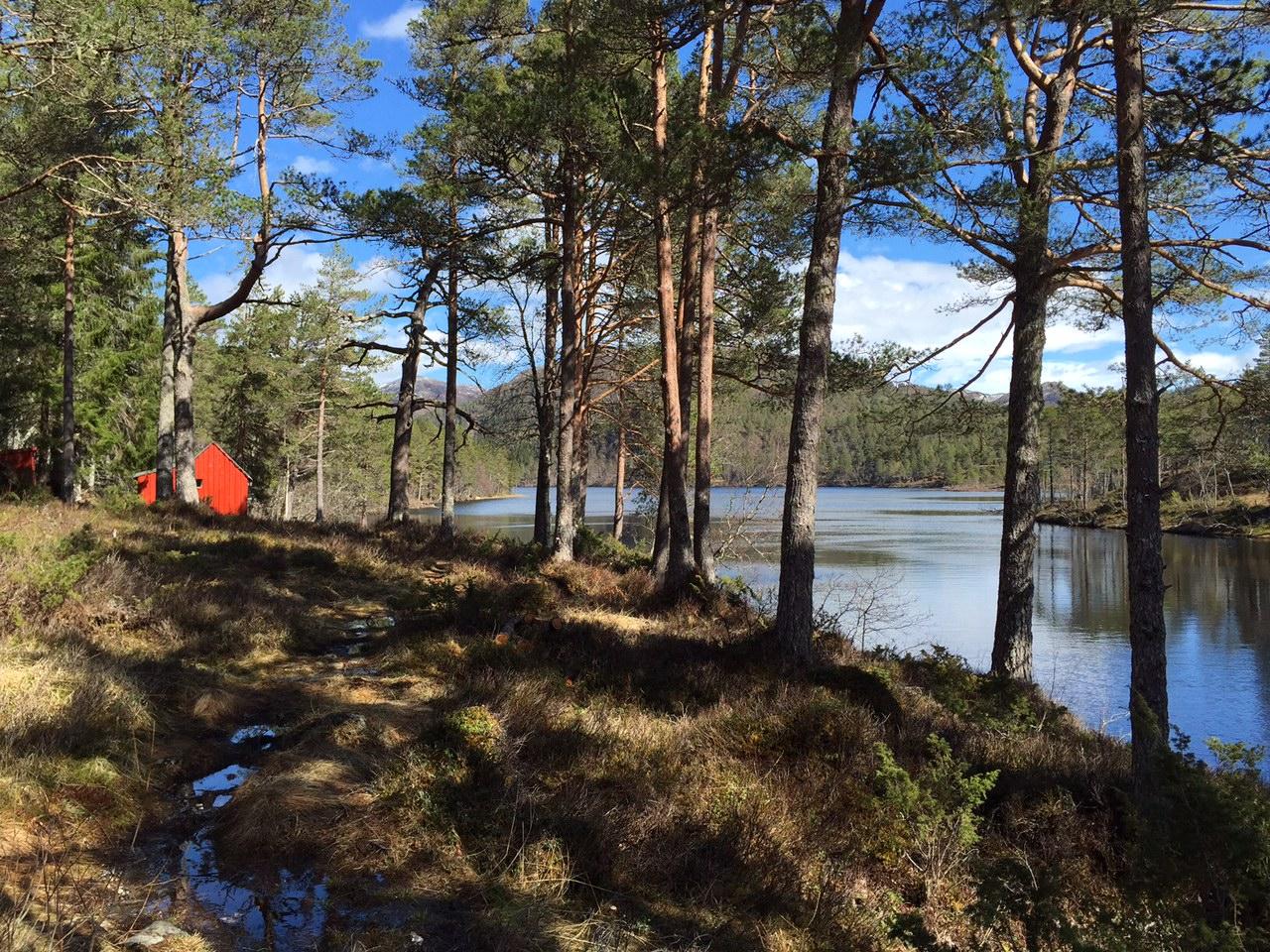 En enkel hytte ved vannet. Det skal ikke mer til, og jeg er sikker på at eieren har det like fint som dem som ahr en luksushytte. Foto: Odd Roar Lange