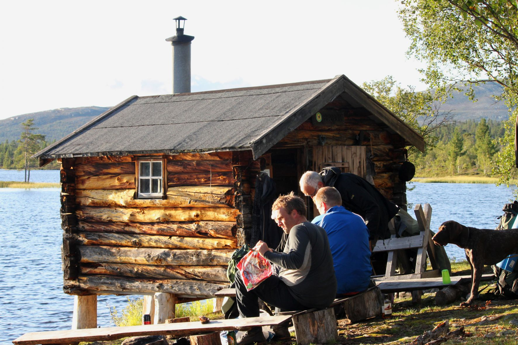 Revbua i Femundsmarka, Sør-Trøndelag (Foto: Geir Wagnild)
