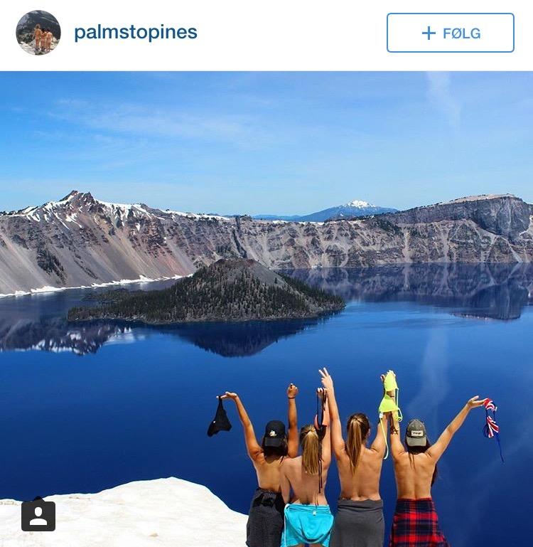 Kaster toppen på toppen Foto fra instagram: @palmstopines