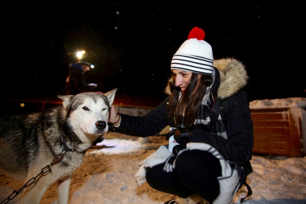 Hyggelig møte mellom hunder og mennesker. Tromsø villmarkssenter leverer på øverste hylle. Foto: Odd Roar Lange