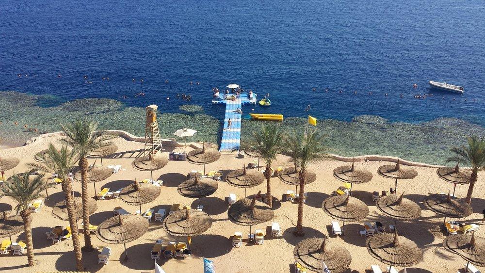 Varme drømmer om Egypt.                           Foto: Marjan Vegt