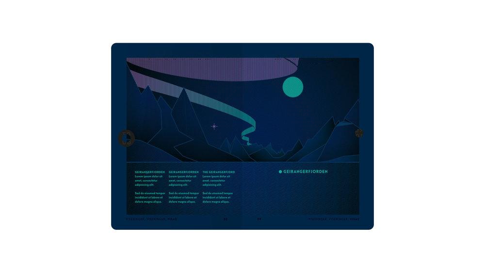Passet skal kunne leses under UV-lys, og da trer denne informasjonen frem.