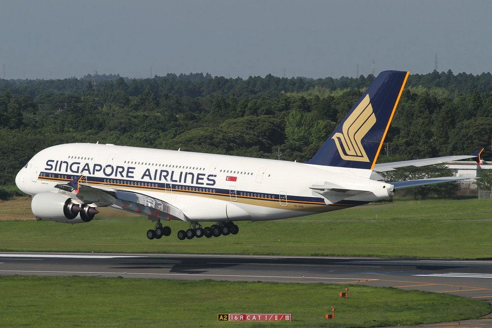 Singapore Airlines A380 - 2.jpg