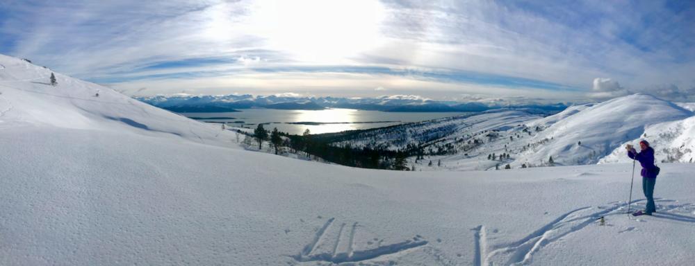 Overlater du oppdagelsene til andre, eller vil du prøve selv?Her med deler av Moldepanoramaet i horisonten.                                        Foto: Odd Roar Lange