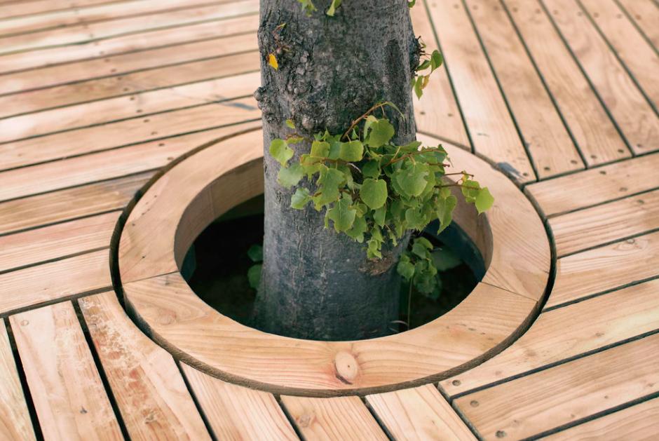 Et lindetre er den eneste veksten på øya CPH-Ø1     Foto: Fokstrot/Copenhagenislands