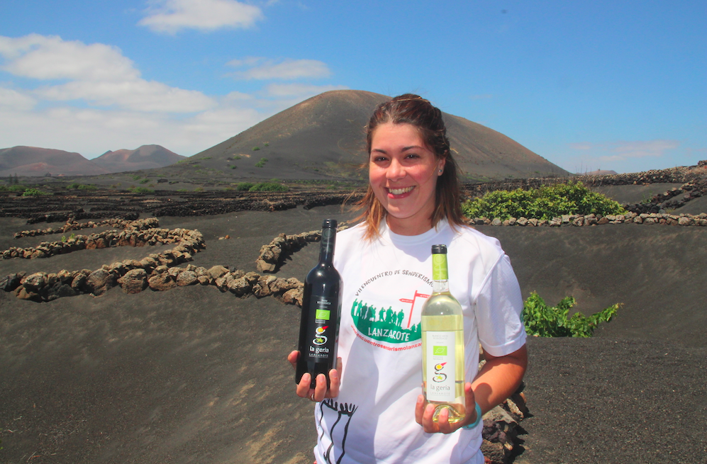 Lanzarote satser stort på økologiske viner. Du kan besøke vinmarkene om du vil. Foto: Odd Roar Lange