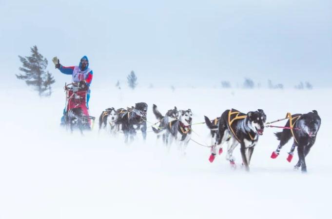 Det er klart for Femundløpet 2019. Foto: Trysil.com