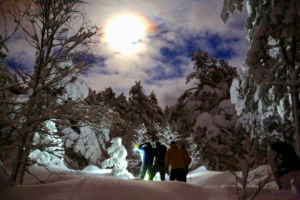 Ta med deg en lommelykt. Kom deg ut i vinterkvelden. Foto: Odd Roar Lange