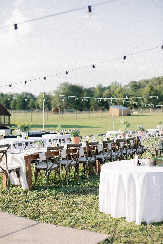 sweet-backyard-wedding-market-lights.jpg