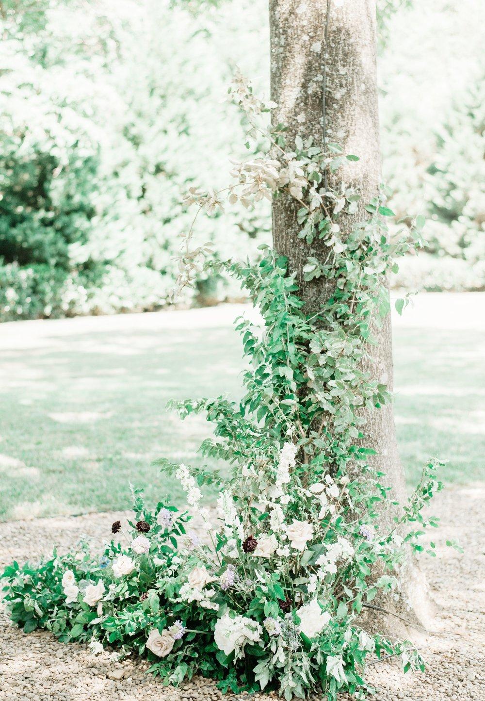 Whitehead Manor | Nc