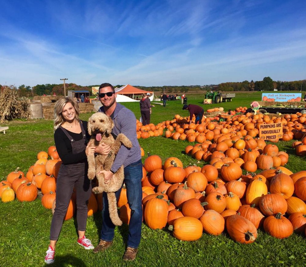 Photo by @suzie_kb at Nickajack Farms Fall Festival & Pumpkin Patch in North Lawrence, Ohio