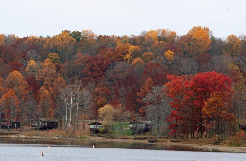 Photo by @ohiostateparklodges at Salt Fork State Park in Lore City, Ohio