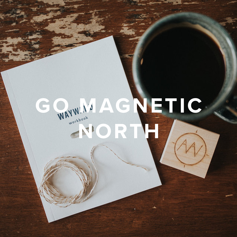 Go Magnetic North