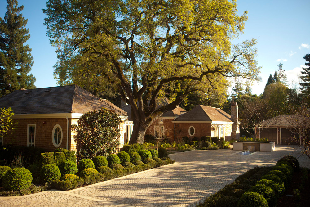 shelby lane     Stone driveway edged with clipped boxwood and espalier magnolia