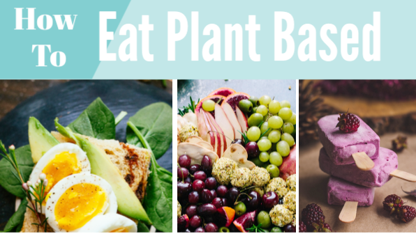Eat Plant Based Long Term With No Honeymoon Hangover!
