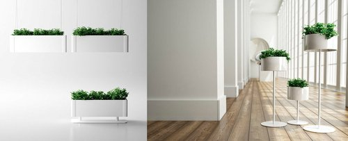greenlightplanter2-10857.jpg