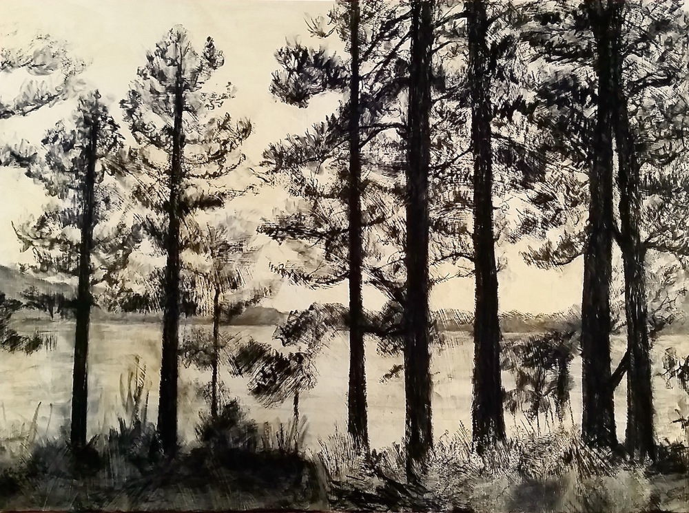 Twilight Pines,  charcoal with acrylic on paper, 22 x 30 in, 2015.