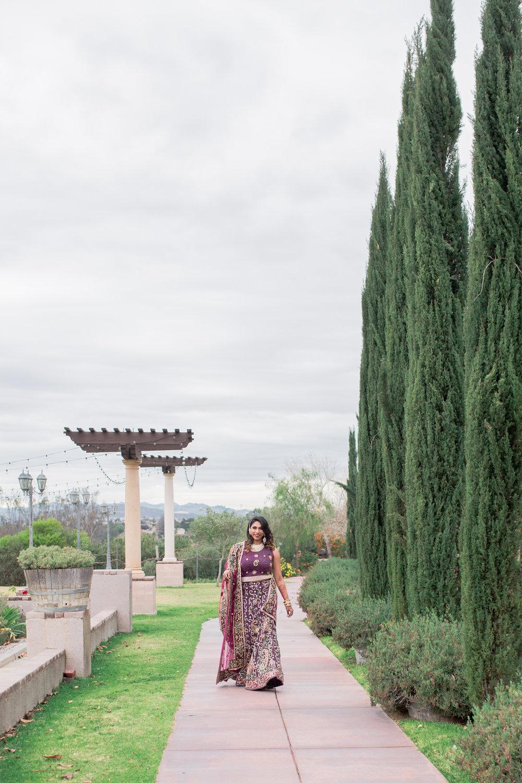 winery weddings, indian wedding photographer, heather anderson photography