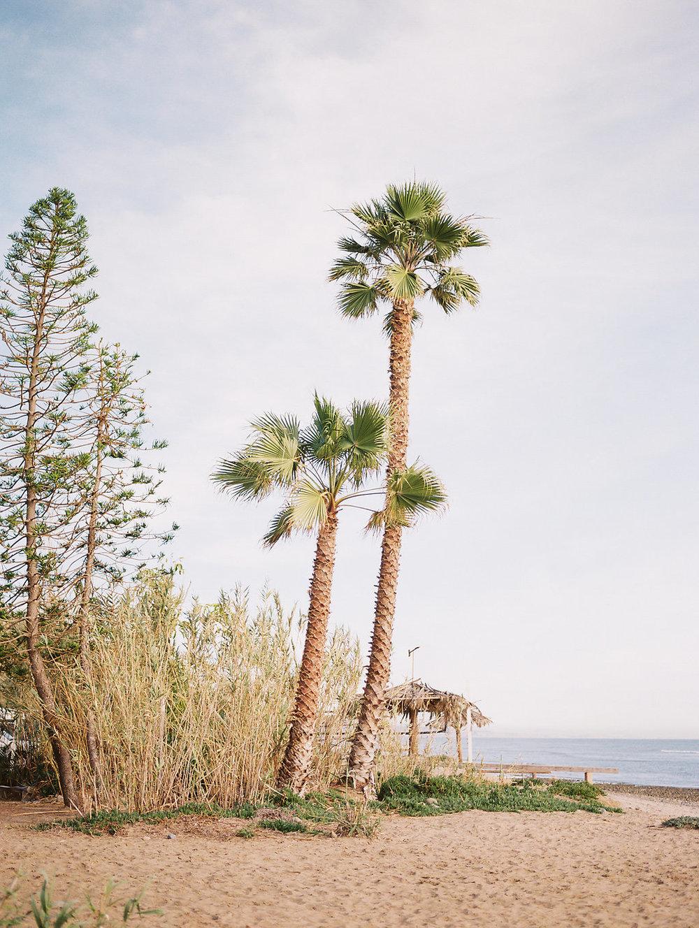 Southern California Beach Wedding by Heather Anderson Photography (www.heatherandersonphoto.com).