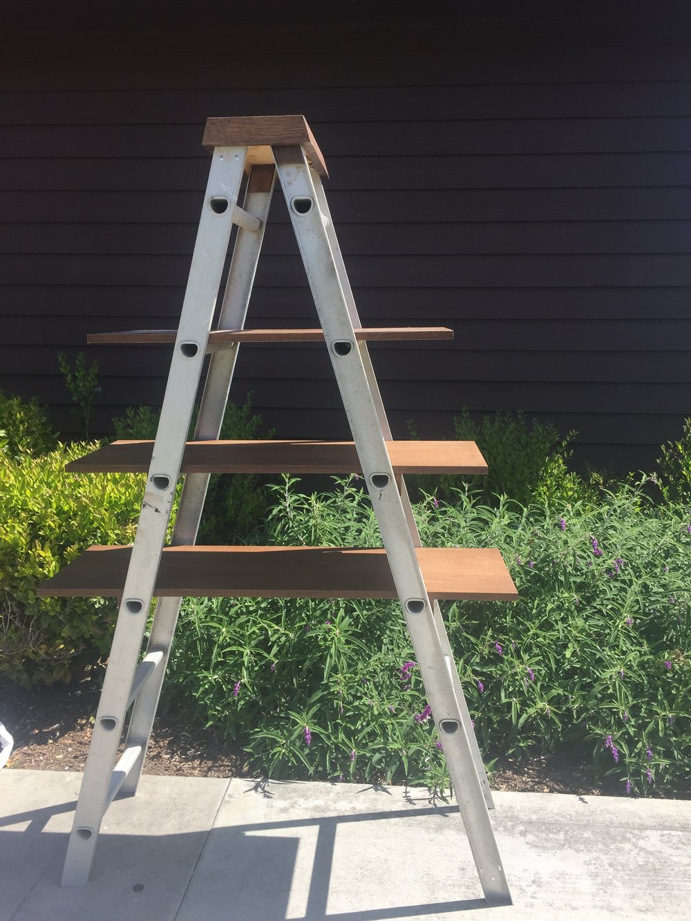 Industrial Ladder - (1)