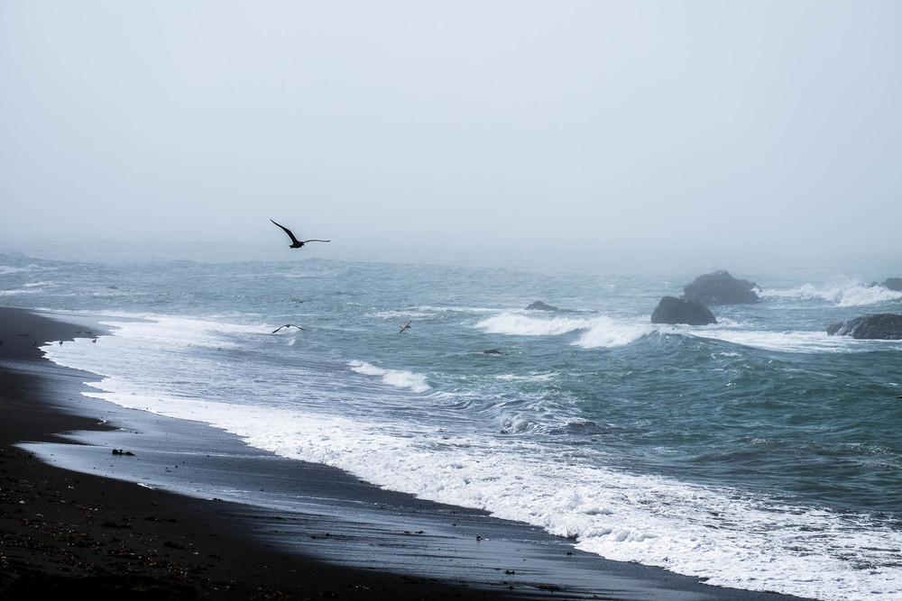 20150907_LOST_COAST_TRIP_696-SMALL.jpg