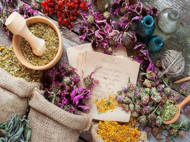 herbal_apothecary.jpg