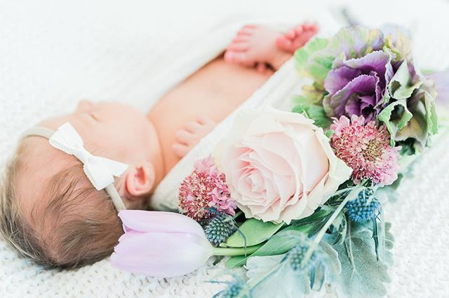 I love using fresh flowers in my little girl Newborn Sessions! Maggie told me her daughter liked pink and purple so those would be great colors, and this is what I came up with. @nectarfloralboutique always has the best unique selections, and I am kind of obsessed with the purple kale addition I found there! Little Marin could be a little cabbage patch kid. 💜🥬 #uniqueflowers #naturalinspirednewborns #newbornphotography