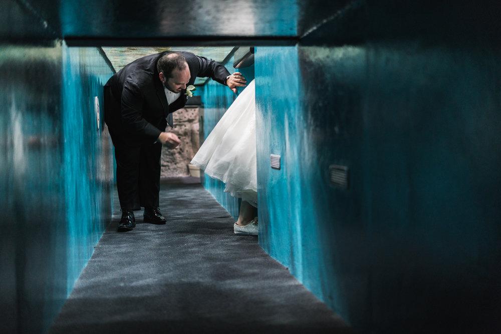 Newport Aquarium Wedding Destination Wedding Photographers Cincinnati-33.jpg