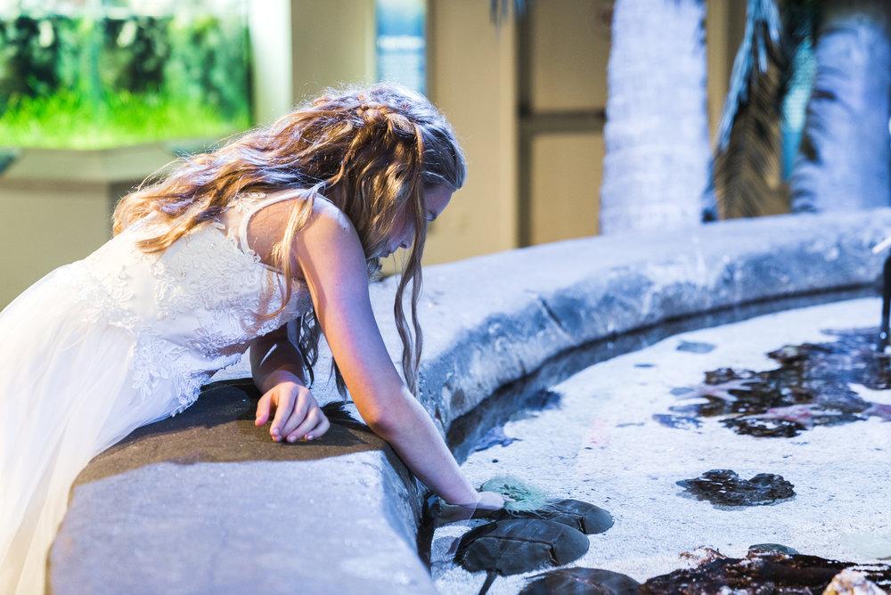 Newport Aquarium Wedding Destination Wedding Photographers Cincinnati-39.jpg