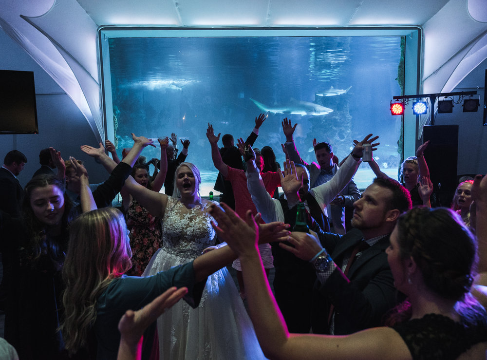 Newport Aquarium Wedding Destination Wedding Photographers Cincinnati-42.jpg