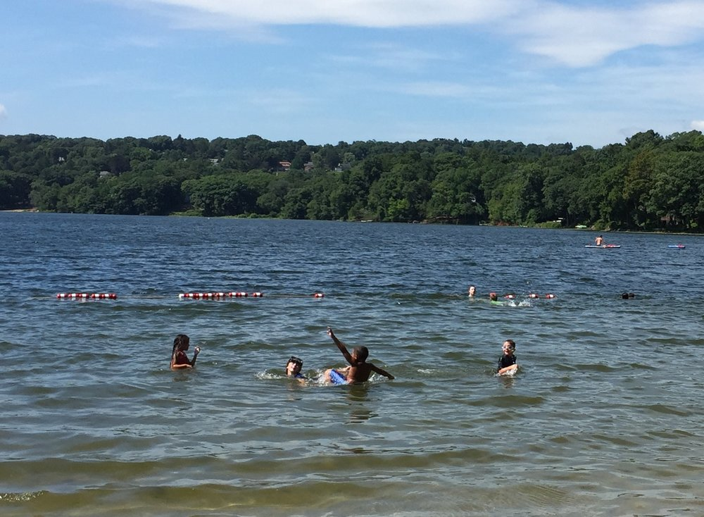 Swimming at Shannon Beach in Winchester.