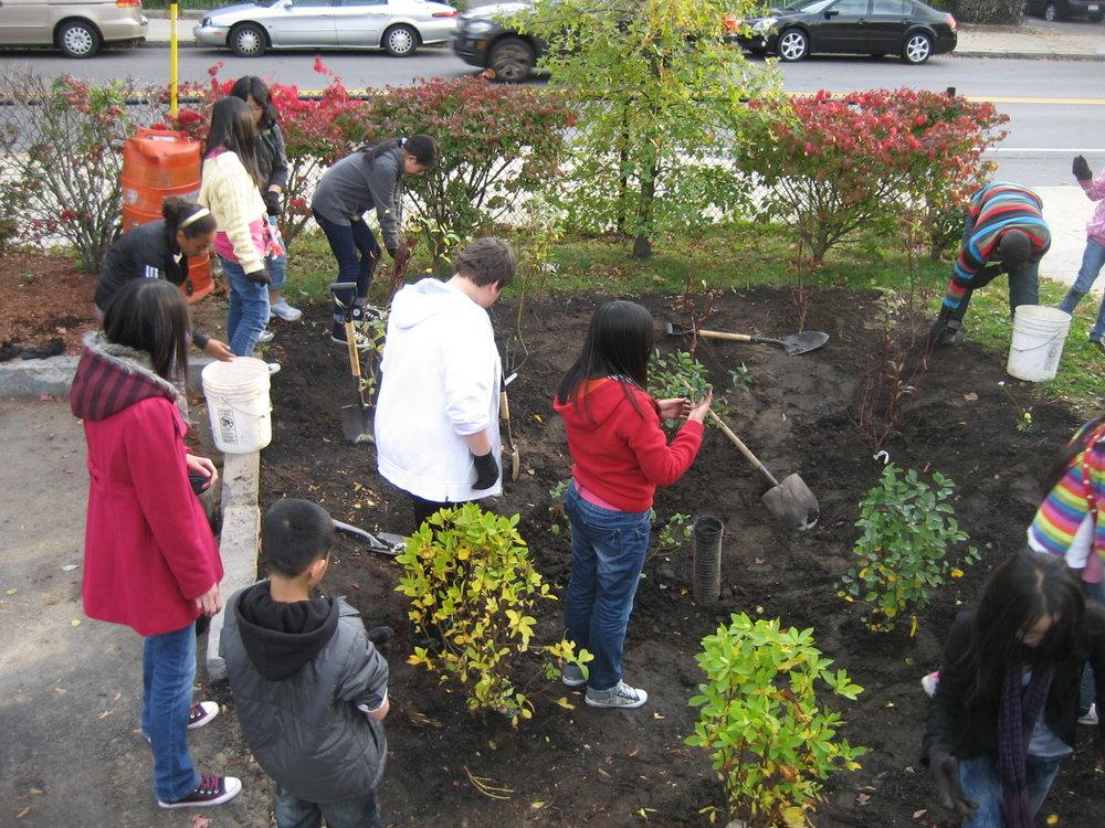 Community members constructing a rain garden in Malden.