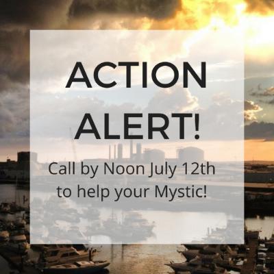ACTION ALERT! 7.11.18 (SQ).jpg