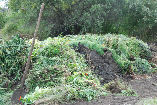 compost pile being built