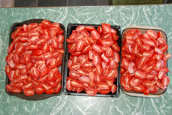 Roma tomatoes halved prior to putting through the passata machine.