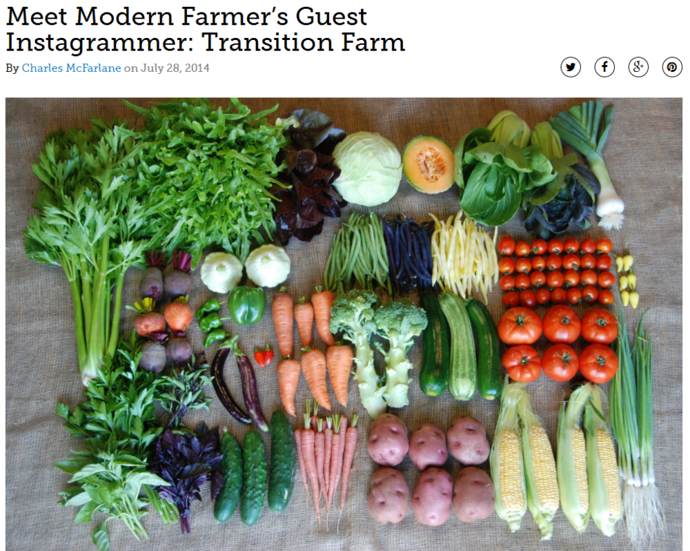 Modern Farmer 2014