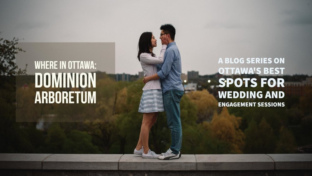 Mocha Tree Studios Ottawa Wedding and Engagement Photographer and Videographer Dark Moody Intimate Authentic Modern Romantic Cinematic Best Candid WHERE IN OTTAWA: DOMINION ARBORETUM | A BLOG SERIES ON OTTAWA'S BEST LOCATIONS FOR WEDDING AND ENGAGEMENT SESSIONS