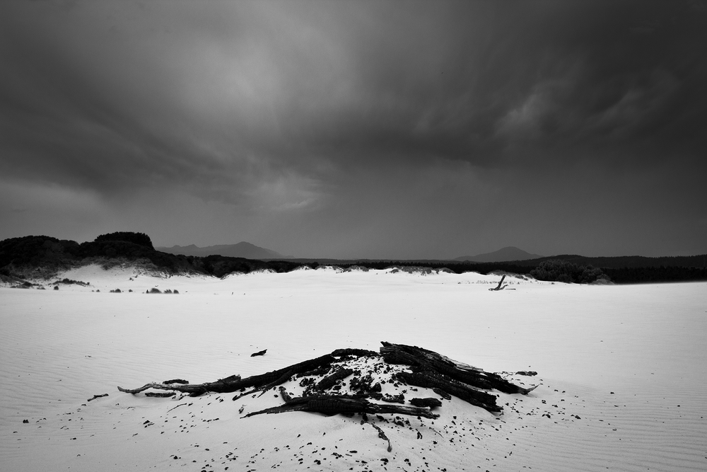 Henty_Dunes_Tasmania_Black_and_White.png