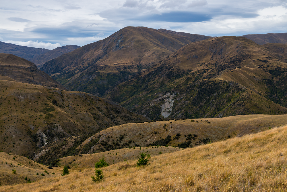 Arrowtown_New_Zealand_1.png