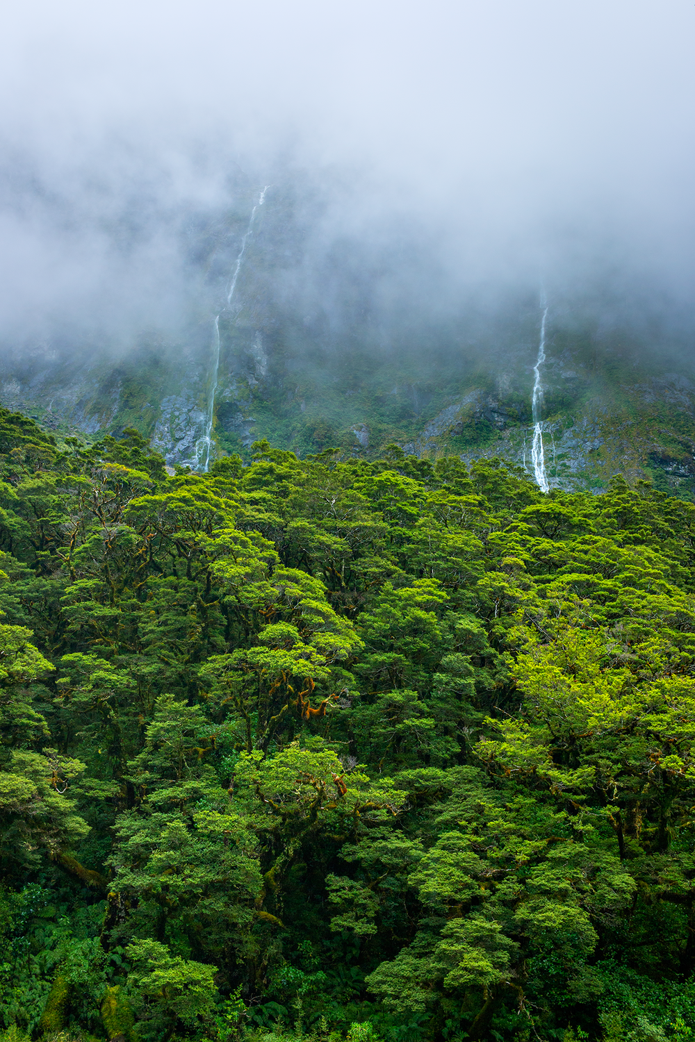Milford_Sound_New_Zealand_4.png