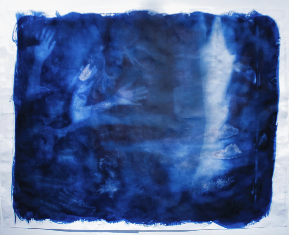 Nature Play by Ariana Sturr, 2017, cyanotype, 4' x 5'