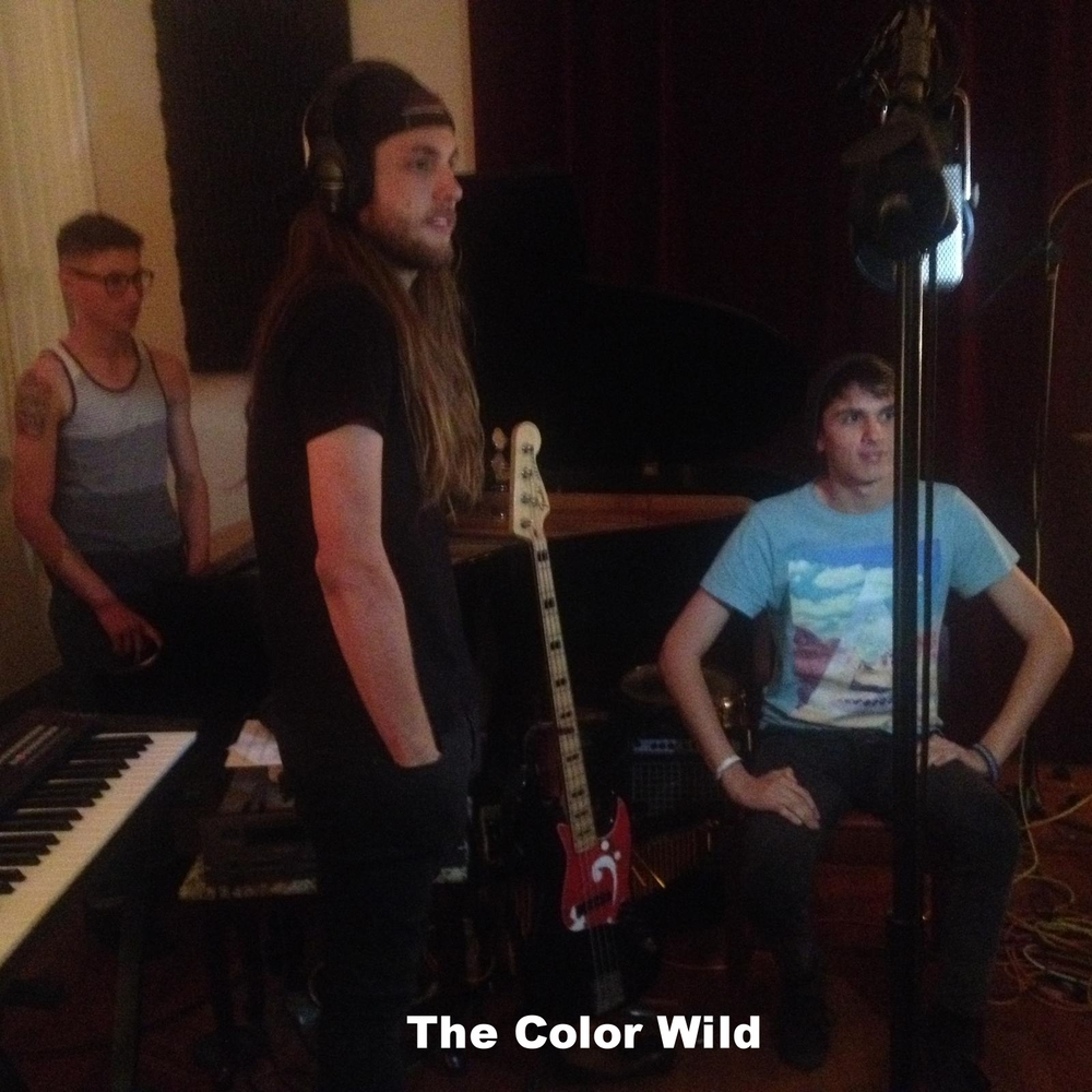 color wild 02.jpg