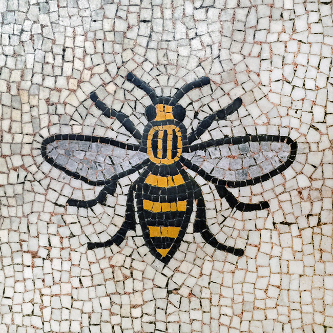 The Lion The Antelope And The Manchester Bee Adrian Mcgarry