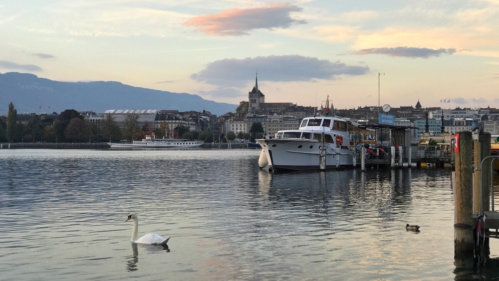 Geneva's old town as seen from the lake at sunrise.