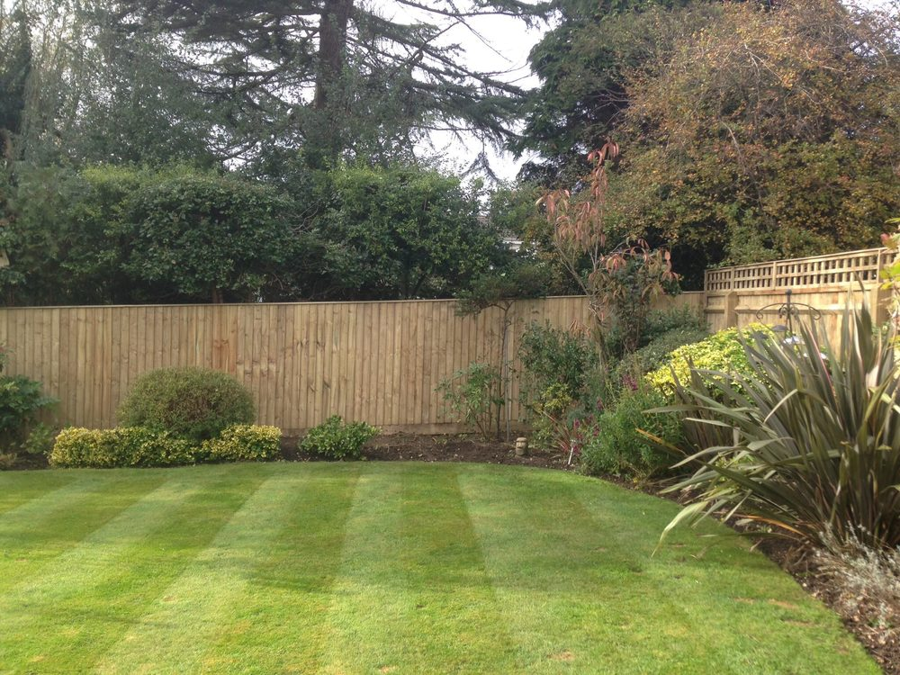Landscaped Garden with Wooden Fence Image
