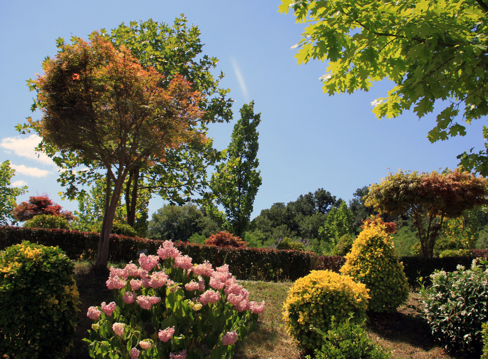 eden-garden-1333691.jpg