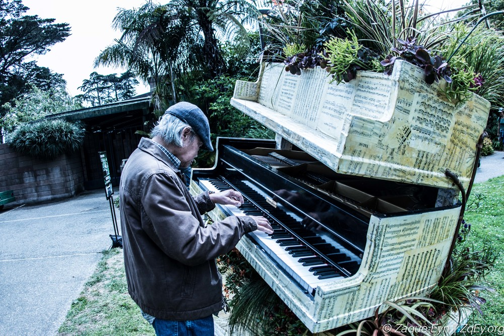 Flower Piano   July 9th 2016 at the Main Entrance. People are encouraged to participate, or just sit back and enjoy. A not to be missed art exhibit in San Francisco lasting the full week of July 9th - 18th 2016.  -   Sunset Piano   and   Botanical Gardens   SF