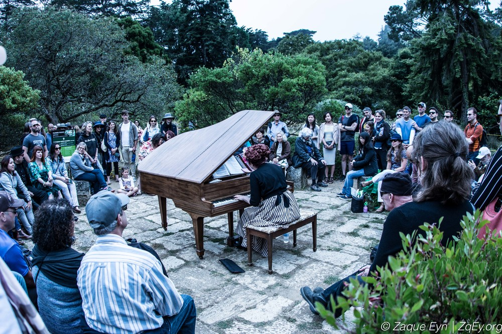 Kitten on the Keys   performs at   Flower Piano   2016