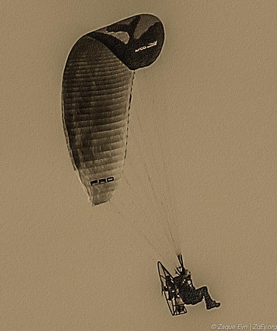 Flying (1 of 1).jpg
