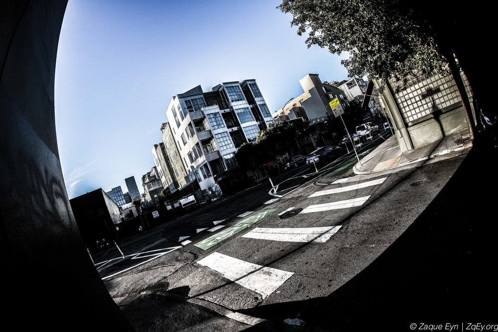 SF City Life Day 2-17.jpg